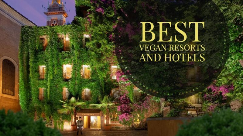 Τα 2 ιδανικότερα ξενοδοχεία για vegan