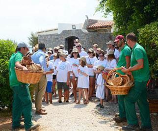 Οι επισκέπτες του Creta Maris Beach Resort γίνονται κοινωνοί του Κρητικού τρόπου ζωής